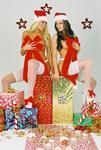 Sheri Stewart and Megan Tyler; Profile: Sheri Stewart;